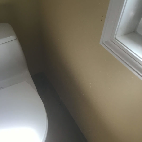 Bathroom Toilet After